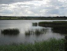 La Chaussée - Lorraine - Côtes de Meuse