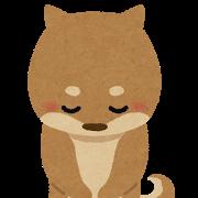 犬の保育園Baby・保育園1日の流れ
