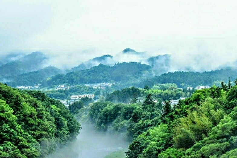 雲海、雨上がりの偶然の撮影。青梅、日向和田付近
