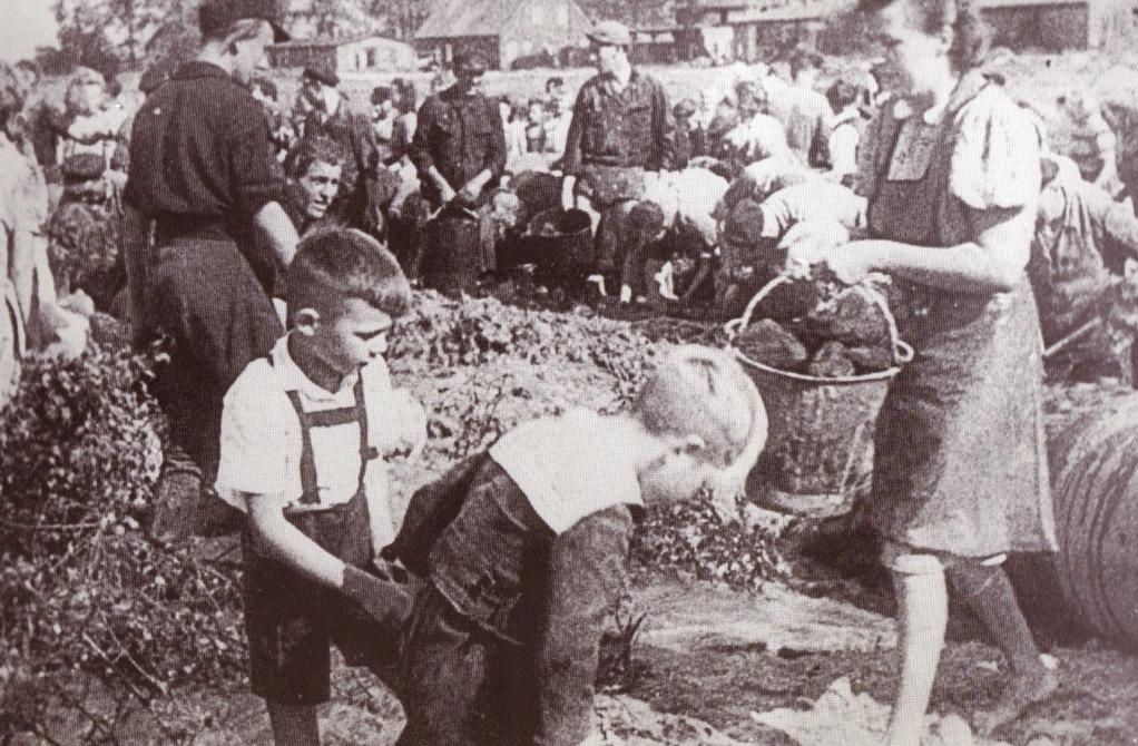 Kohlesuche im Spülfeld, 1947
