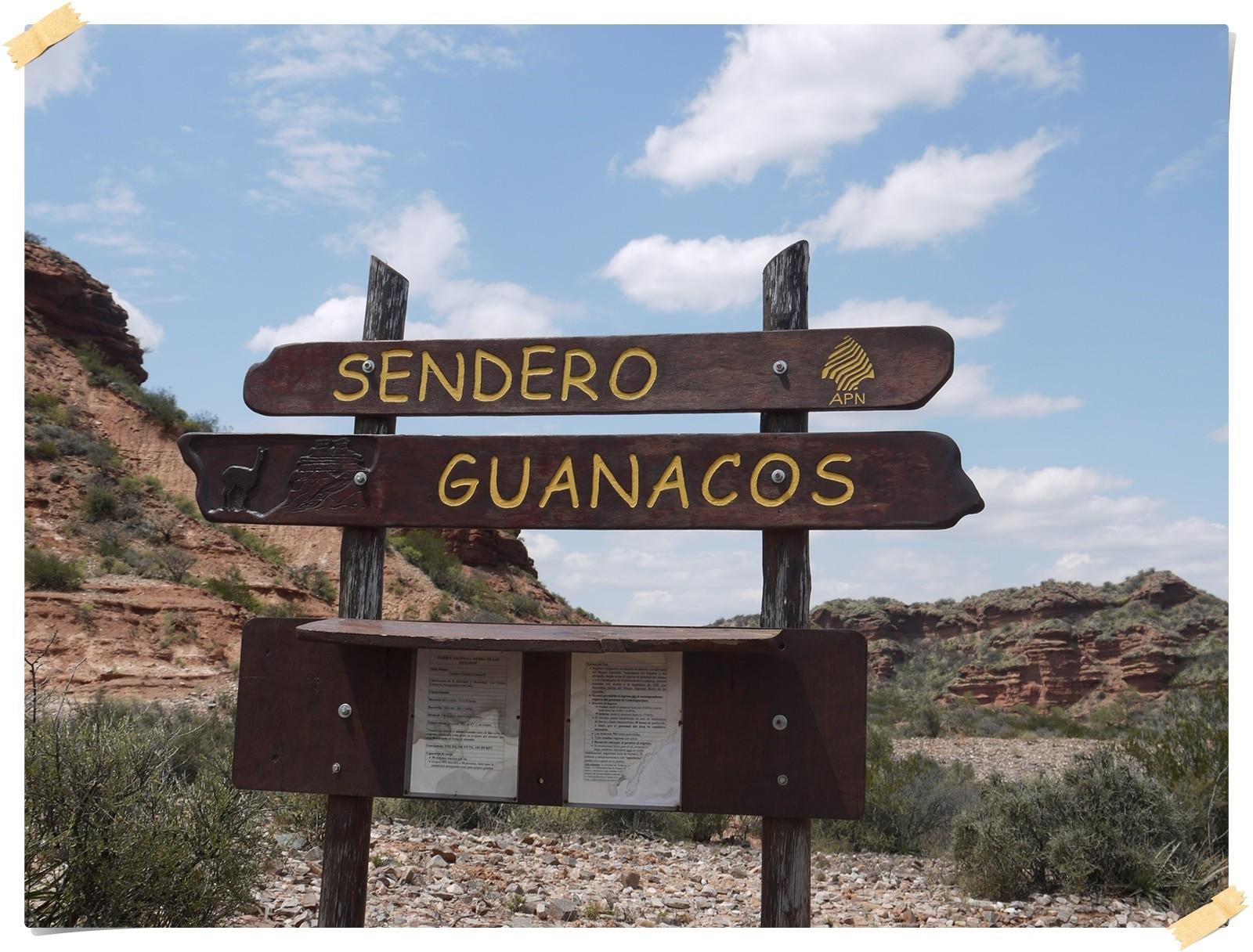 Wir gingen den Weg der Guanacos...