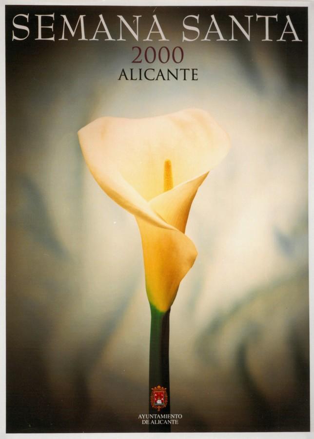 2000 · ANTONIO BELMONTE ALMENDROS