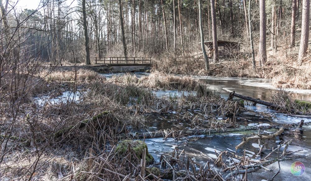 Das Briesetal mit der Hubertusbrücke