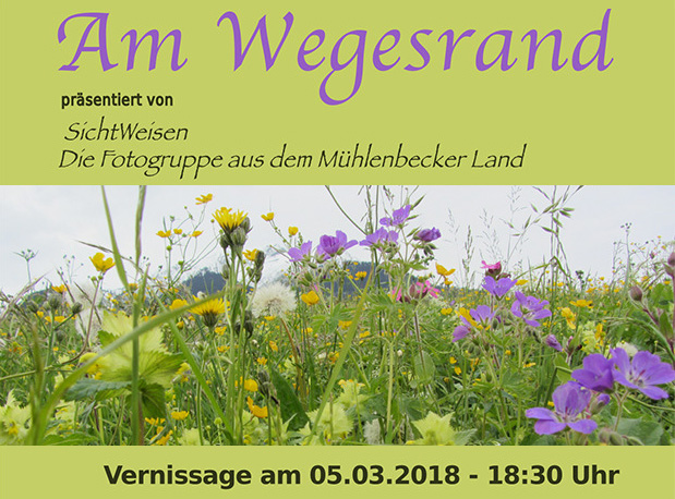 Plakat der Ausstellung der Fotogruppe SichtWeisen im Berufsförderungswerk Berlin-Brandenburg in Mühlenbeck