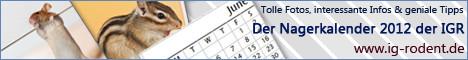 Kalender IGR 2012