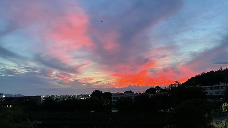 夕日(さくらんぼ,訪問看護・福岡/レインボーアース)