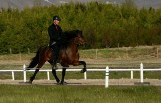 FIZO 2011 mit Þórarinn Eymundsson