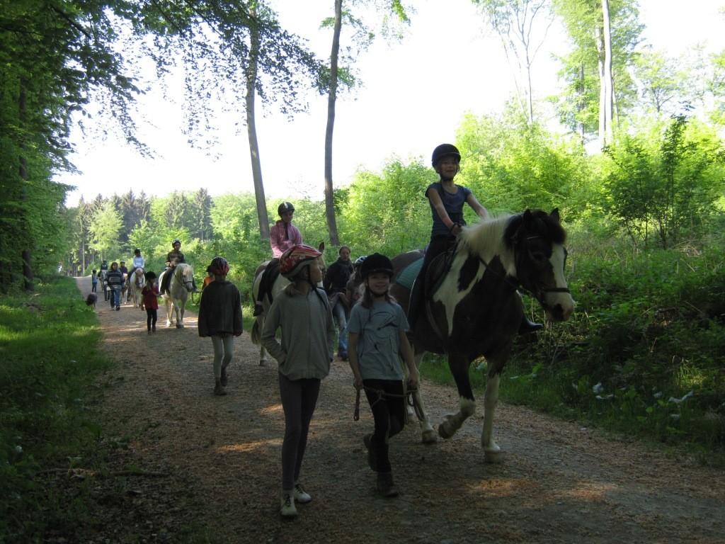 Im Takt der Pferdehufe entschleunigen