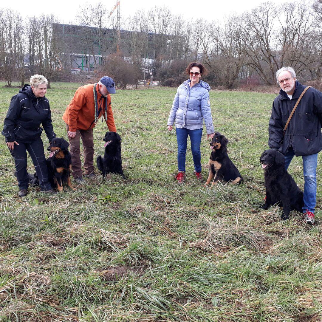 Ein Hund für jeden: von links:Cayuga, Enya, Evita, Cheyenne