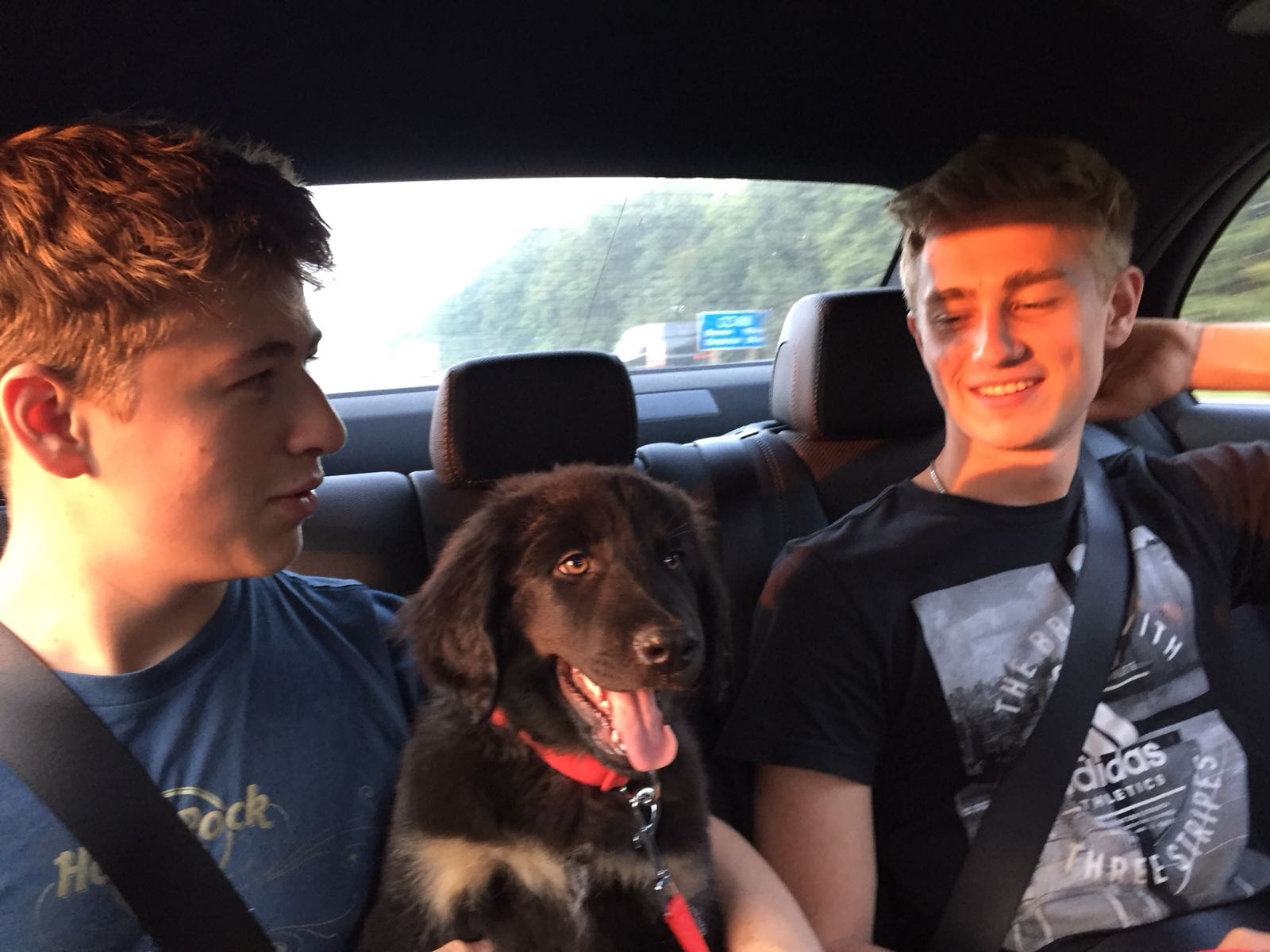 "Linus und Maxi sind stolz ""wie Oskar"""