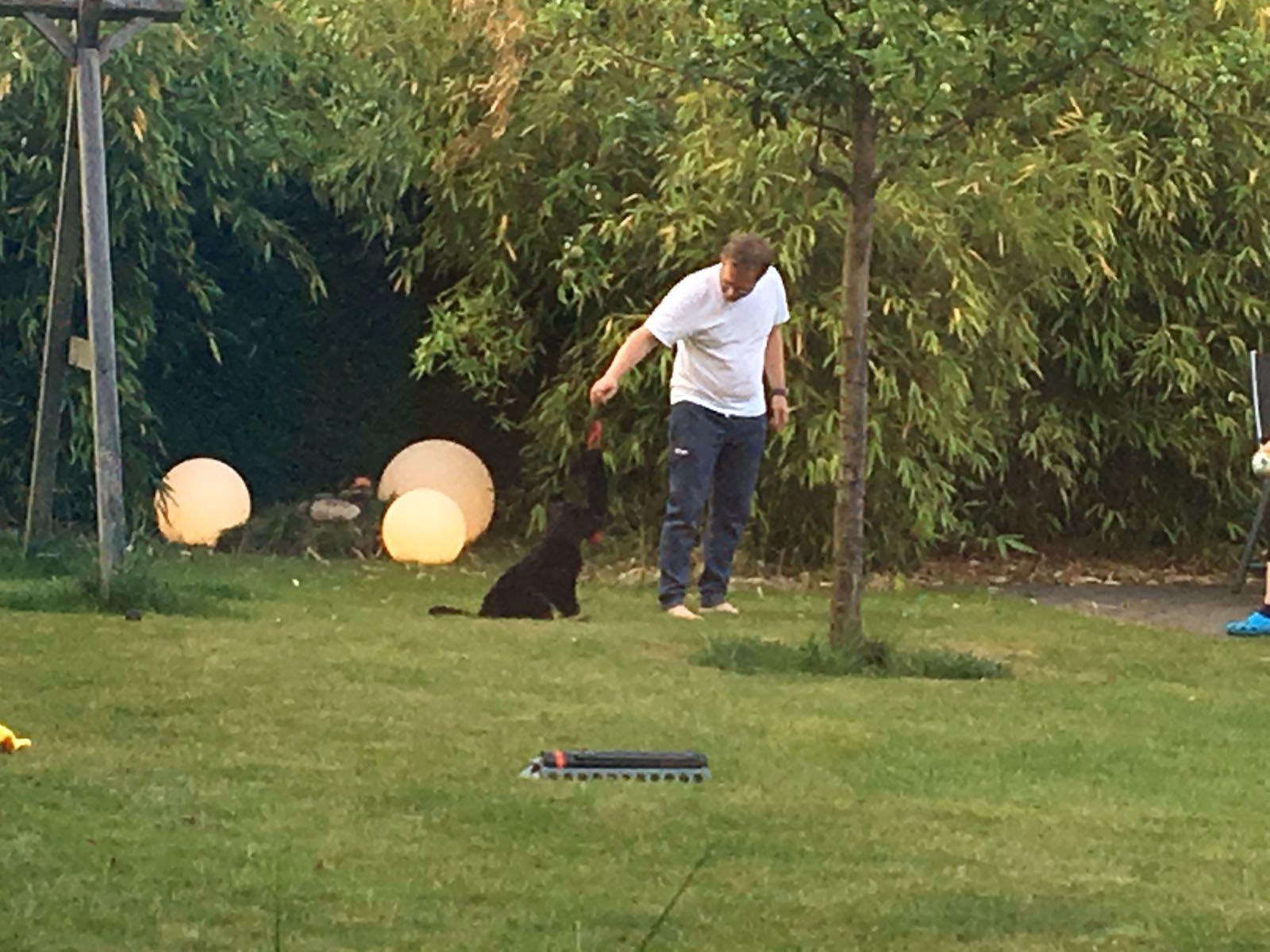 Spiel im neuen Garten