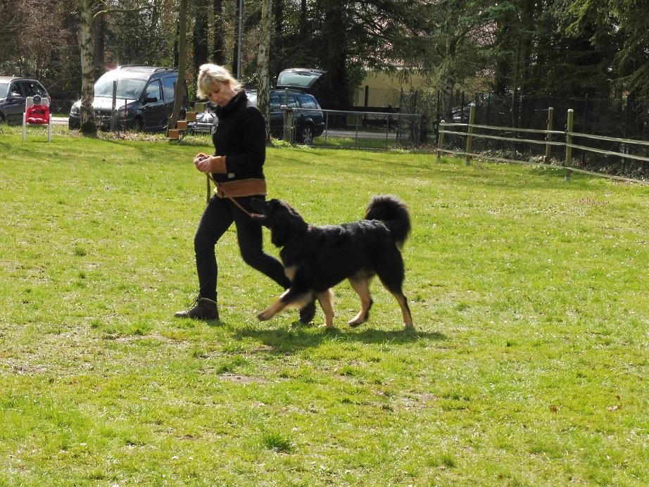 Emma (Fleur) mit Susanne beim Kreislaufen