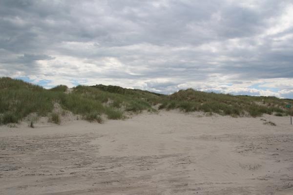 Saltum Strand