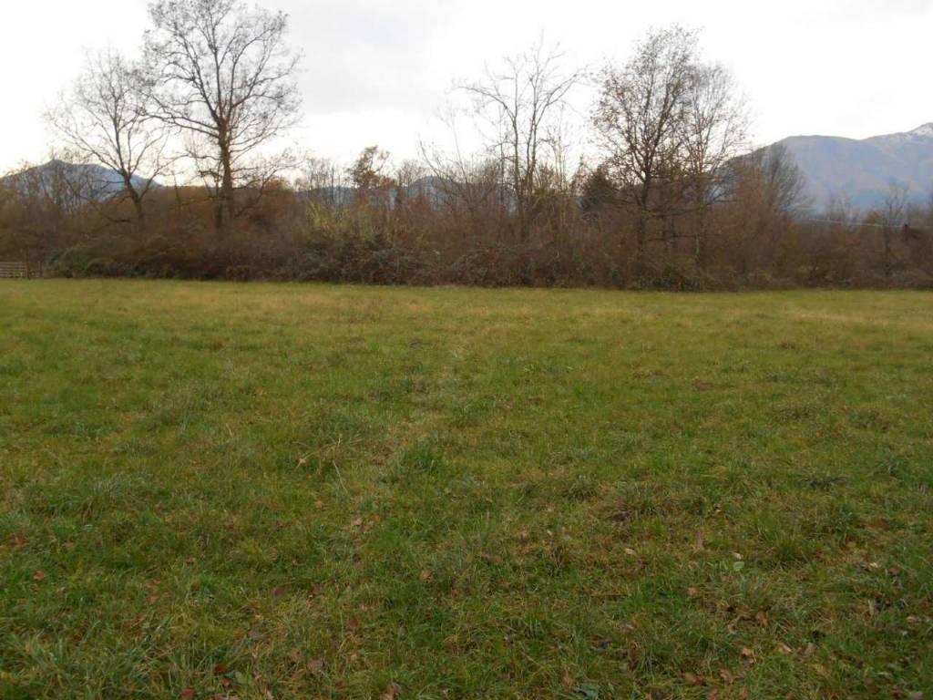 Terreno Agricolo San Gillio (TO)