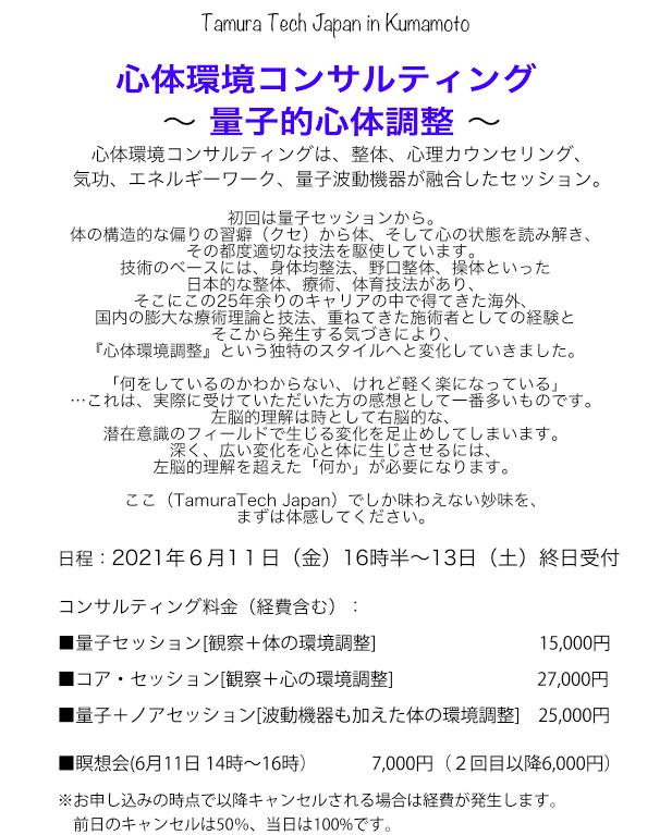 Tamura Tech Japan