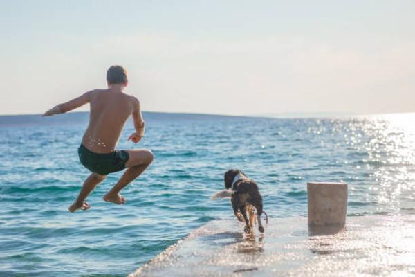 Dein Urlaub mit Hund in Kroatien!