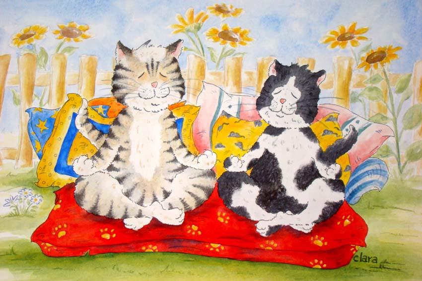 Katzen willkommen, zwei Katzen machen Yoga, cats welcome