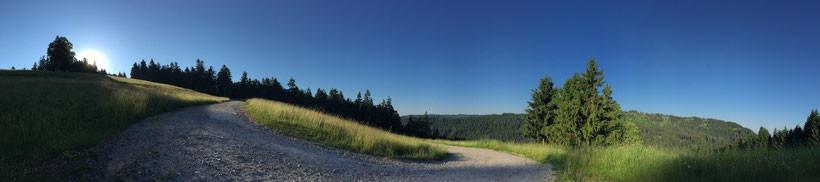 Ruhestein Schwarzwald