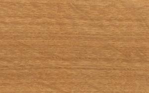 Oak [EIC]