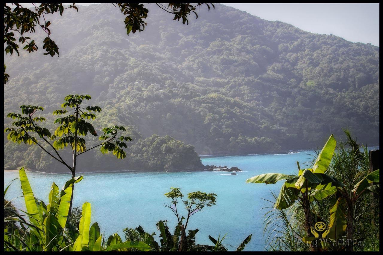 Tobago Panorama  /  123