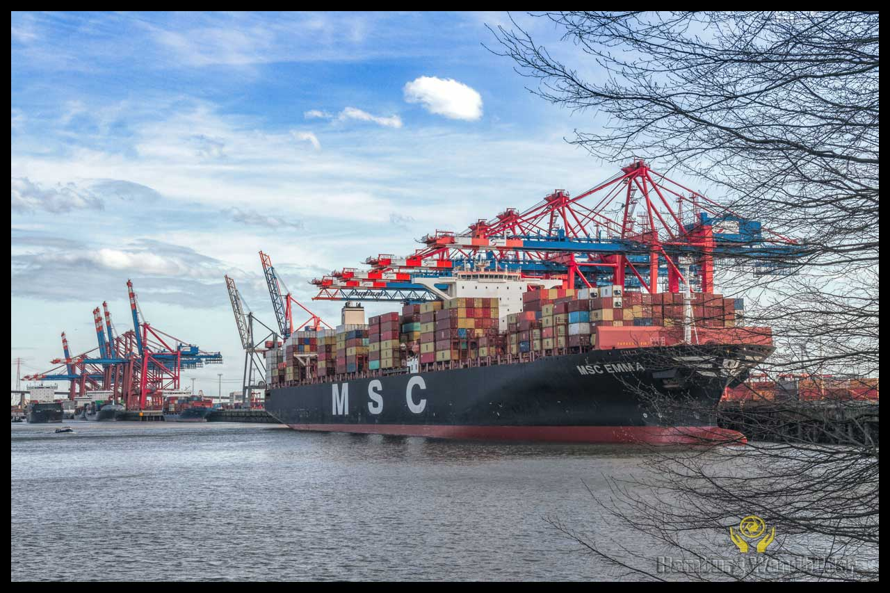 Containerschiff  /  1389
