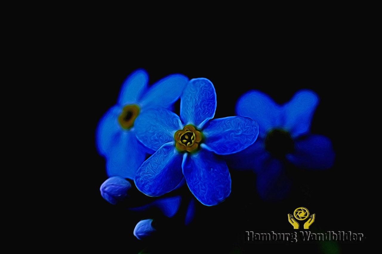 Blaue Blumen  /  1199
