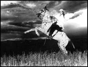 Sundance #F-500 July 17, 1949 im Alter von 17 Jahren mit Peggy Davis im Sattel (Photo Appaloosa Journal) - Quelle: Sheila Archer