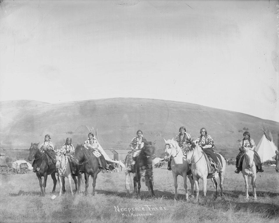 Nez Perce women – 1906 > Auffallend ist die Anzahl der Fewspots und Solids!