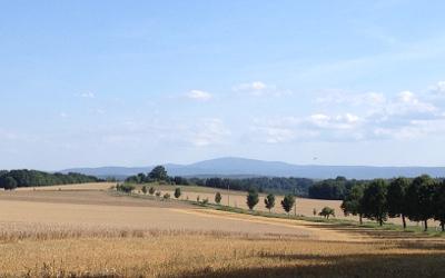 Natürliche Standortverhältnisse Agrar Vorharz