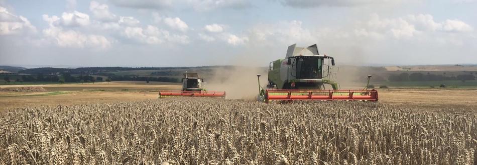 Landwirtschaft für Menschen Agrar Vorharz