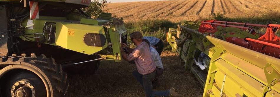 Agrar Vorharz Gemeinschaft