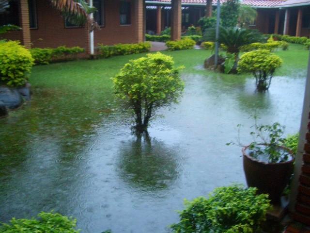 雨季時の庭の様子