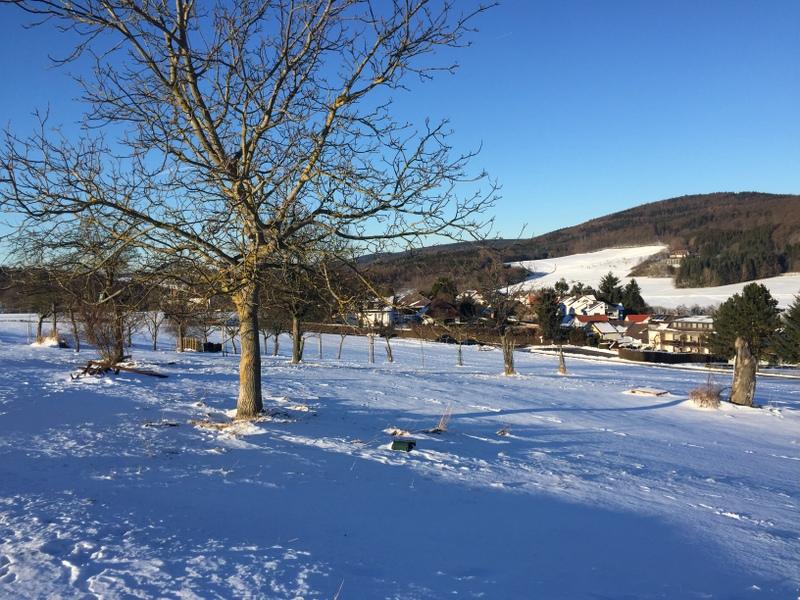 Winter auf der Streuobstwiese