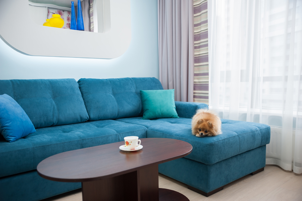 Дизайн интерьеров квартиры-студии, вид 4