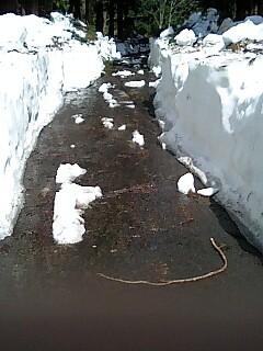 林道両側の雪の壁