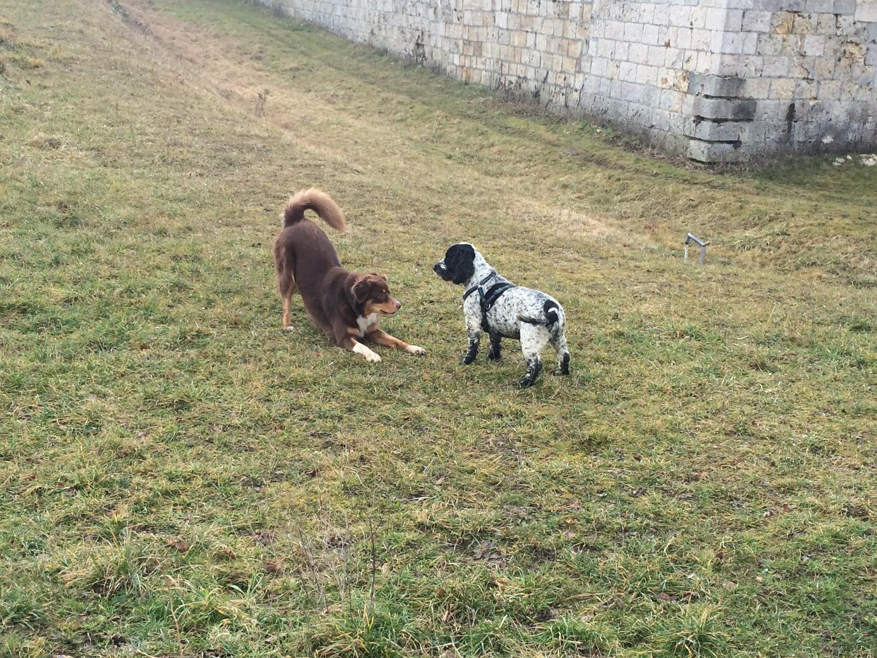 Spiel mit mir!!
