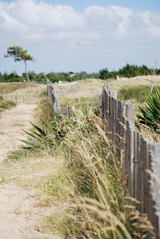 Les dunes de la plage de la Court