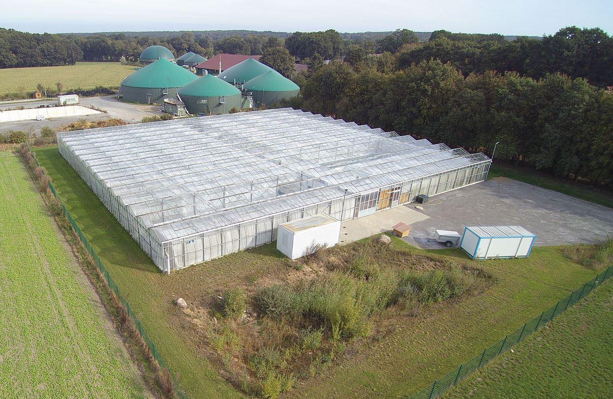 Rockstedt: Produktion von Pilzen und Algen. Land & Leben 09/2021 S. 23