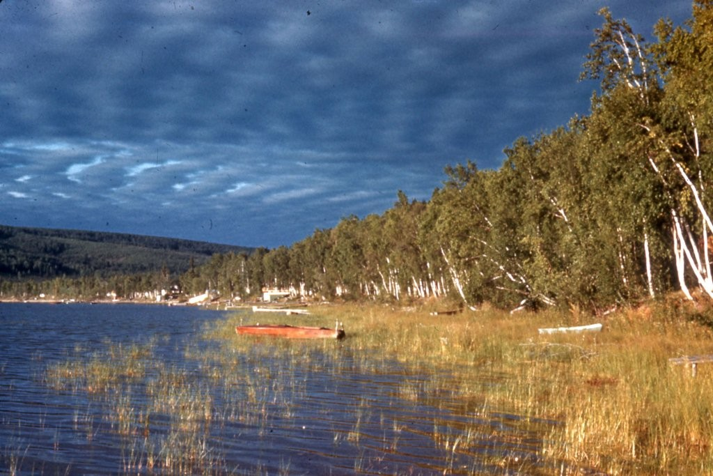 Photo taken looking south along west shore of Harding Lake in vicinity of Warwick cabin.  Probably taken in early 1950's
