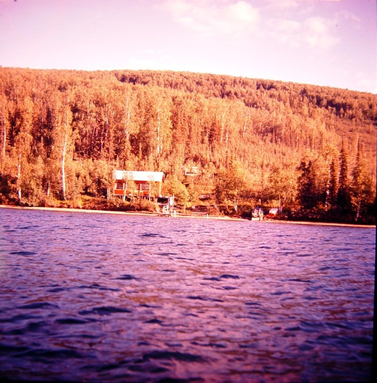 Cabin on east side in the cove at Harding Lake from 1950's.