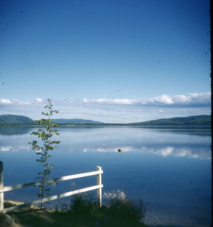 Photo taken in early 1950's from area of Niewhoner cabin at 5th Street.  Notice no cabins on far or east side of Harding Lake