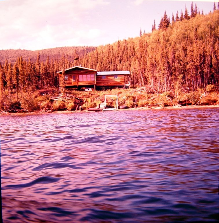 Groseclose cabin on far side of Harding Lake just after it was moved there in 1950's.  Image is reversed.