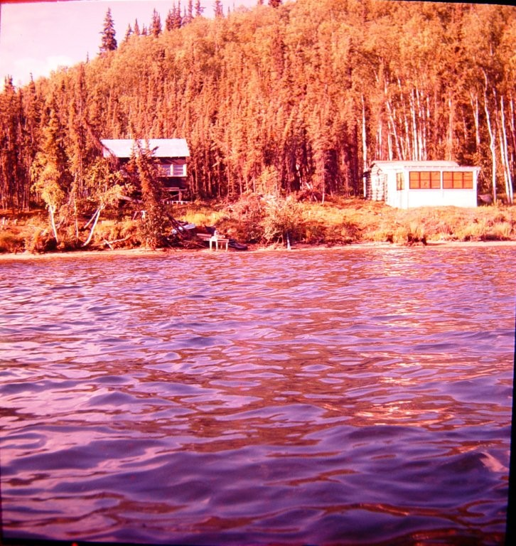 Geraghty cabin on far side of Harding Lake in 1950's, near Groseclose cabin and Bingle Camp.