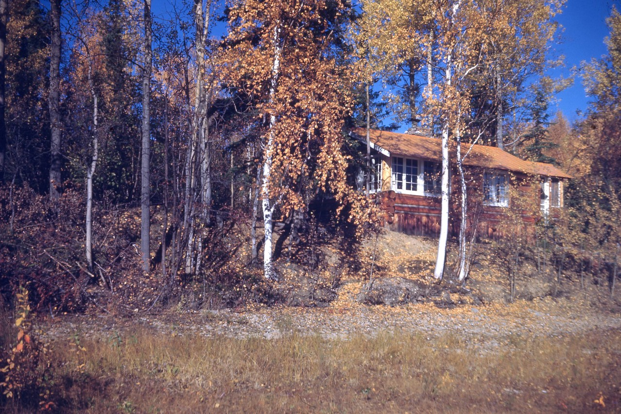 Ear and Pat Cook cabin at Harding Lake in 1943.  Now owned by Nancy Cook Hanson.