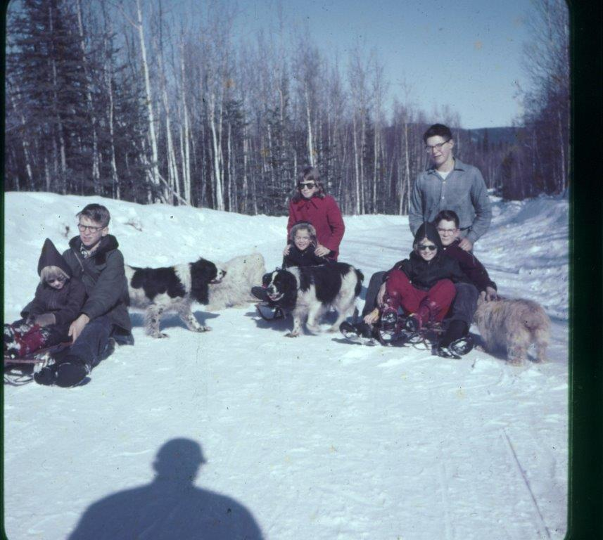 Cook  Baggen families sledding on Salcha Drive Harding Lake 1950's