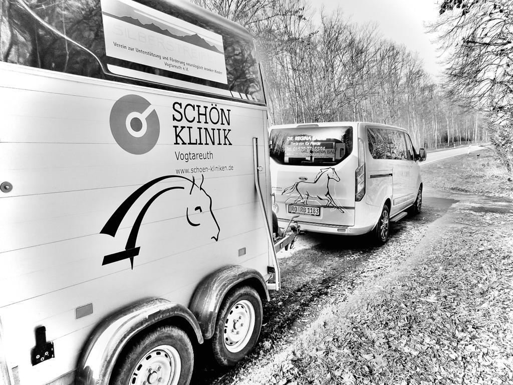 Durchführung eines Pferdetransport unter tierärztlicher Überwachung