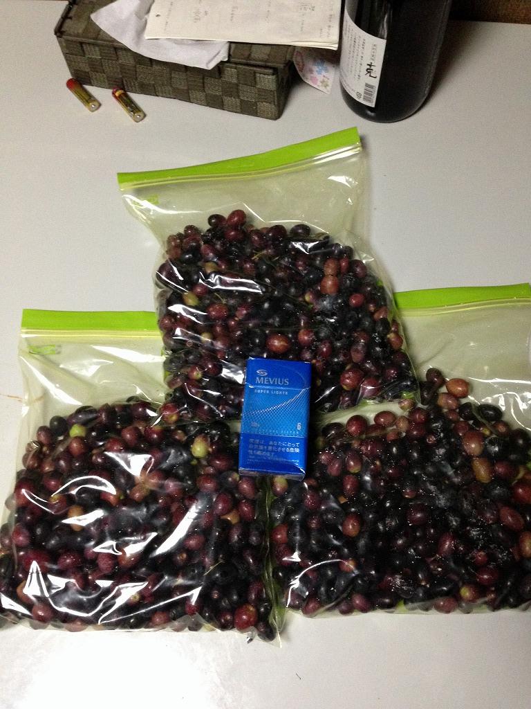 まず実を収穫。ジップロックなどの丈夫なビニール袋に入れます。