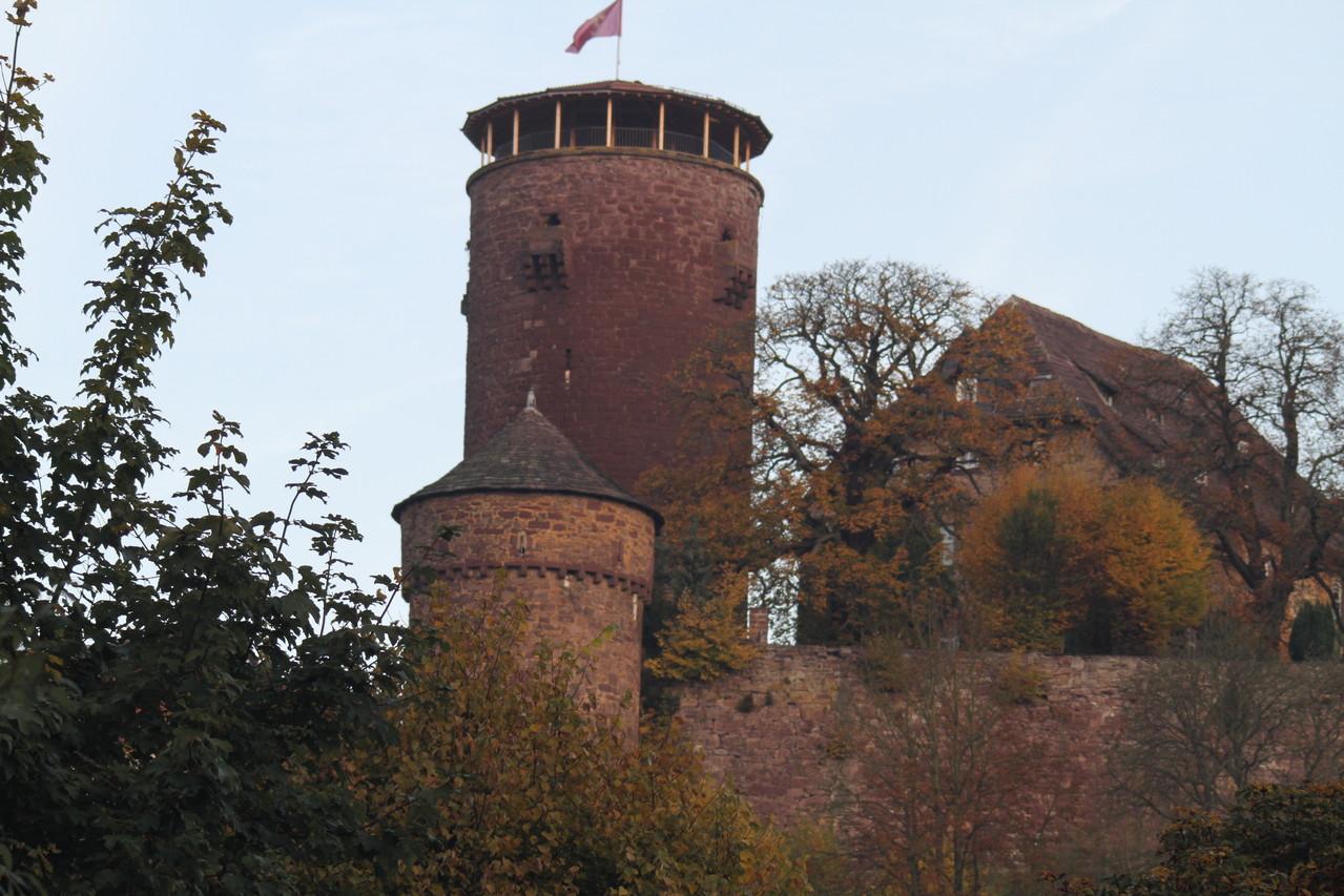 Toren van de 'Trendelburg'