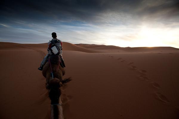 Kamelwanderung durch den Erg