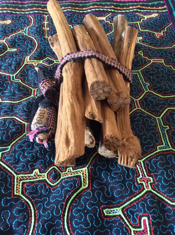 Ayahuasca Vines arriving from Perú